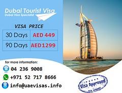 visa price
