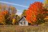 Fall at The Schoolhouse