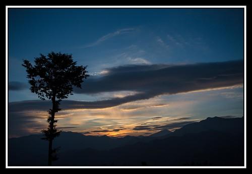 morning trees sun mountains nature clouds sunrise landscape asia taiwan alishan