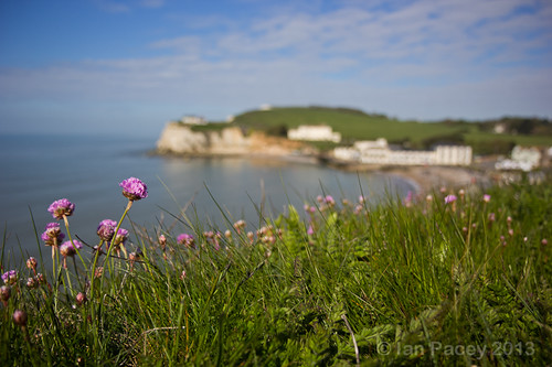 Spring Time at Freshwater Bay