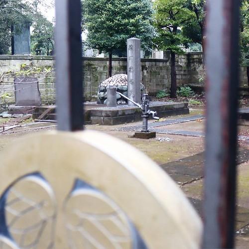 葵の御紋の向こうに見えるのは、徳川慶喜の墓所内にある格式高い井戸ポンプ。