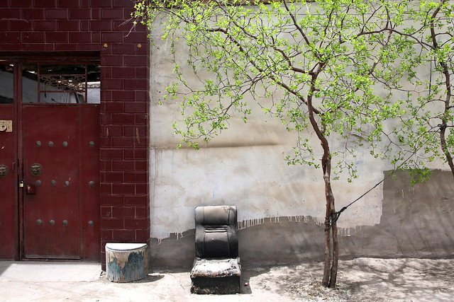 Jujube tree in Kumul (Hami) ハミ、民家前のナツメの木