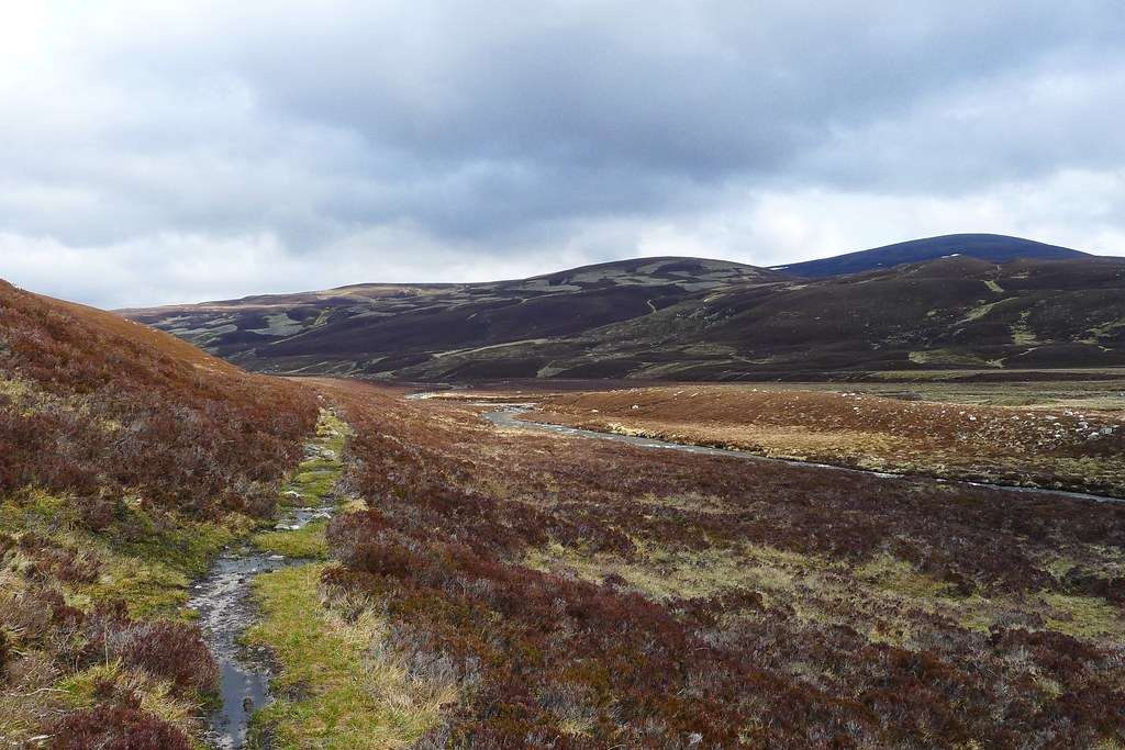 Track through Glen Gairn