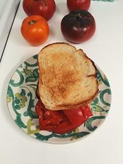 No. 14 #tomatosandwichproject