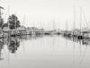 B&W marina reflections