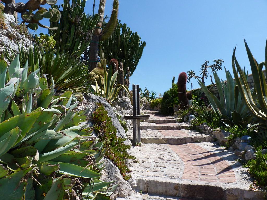 Jardin exotique d\'Eze - Alpes Maritimes | Patricia | Flickr