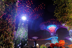 Light show @ Gardens by the Bay