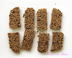 Crunchy Double Chocolate Coconut Oat Bars