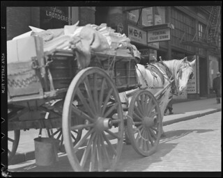 Horse and cart on Boston Street, after 1934
