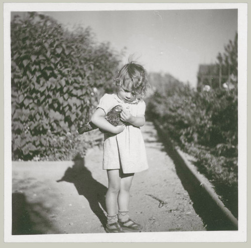 Small Girl with Chicken