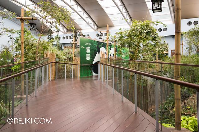 River Safari - Giant Panda Forest 2