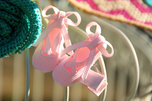 Ballet-Slippers_On-Bird-Cage2