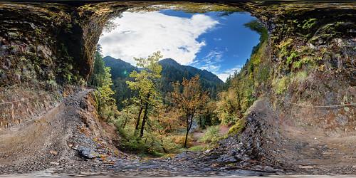 park panorama usa oregon landscape cloudy pano panoramic hike trail columbiagorge stitched 360x180 eaglecreektrail ptgui equirectangular canon1740mm canon5dmk2 garretveley promotecontrol nodalninjam1l