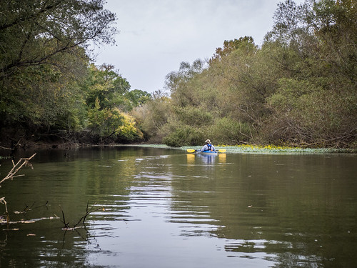 Savannah River from Stokes Bluff with LCU Nov 7, 2014, 4-18 PM Nov 8, 2014, 10-25 AM