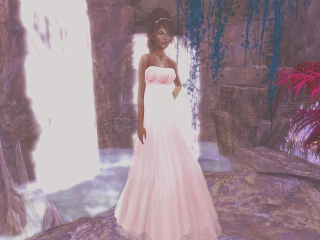 Flippant BCA Gown + Group Gift full