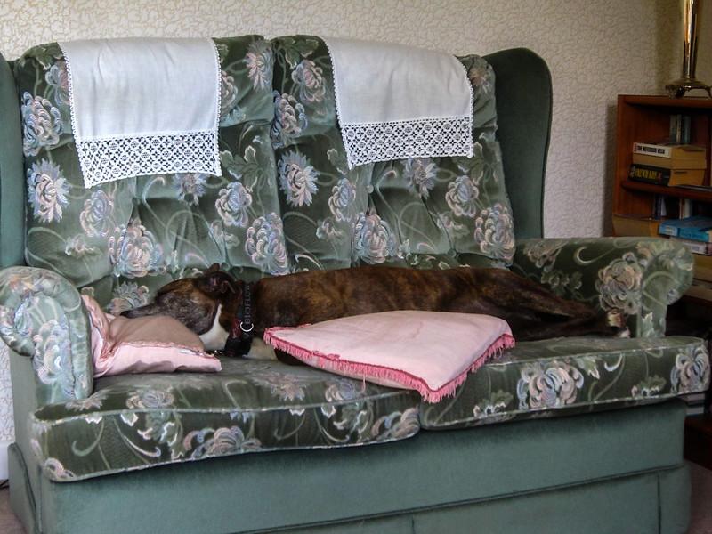 More comfortable still