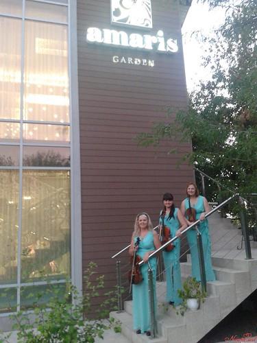 """""""Creativ"""" Cvartet - echipă de muzicieni profesioniști cu o bogată experiență în domeniu. > Foto din galeria `""""Creativ"""" Cvartet Foto Galerie`"""