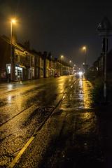 292/366 - Copperhead Road