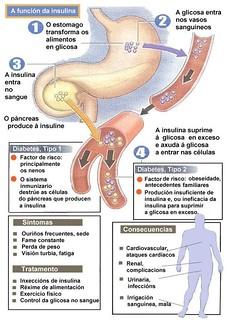 Diabetes-grafico-01