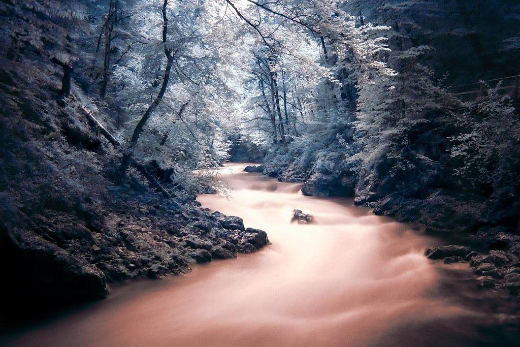 Ущелье Винтгар (Gorge Vintgar)