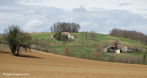 Printemps sur les collines du Brulhois