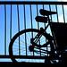 Bike Silouette