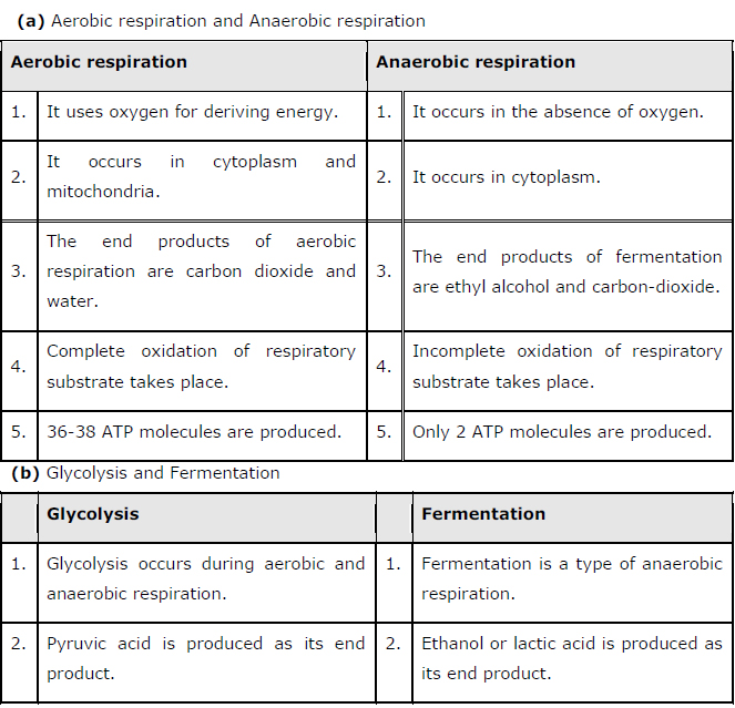 Ncert solutions class 11 biology chapter 14 respiration in plants question 7 distinguish between the following a aerobic respiration and anaerobic respiration b glycolysis and fermentation ccuart Gallery