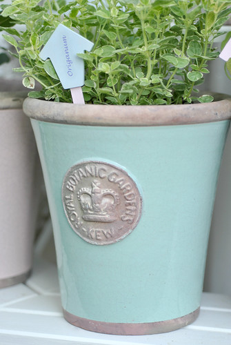 Handmade Origanum herb label in Kew pot