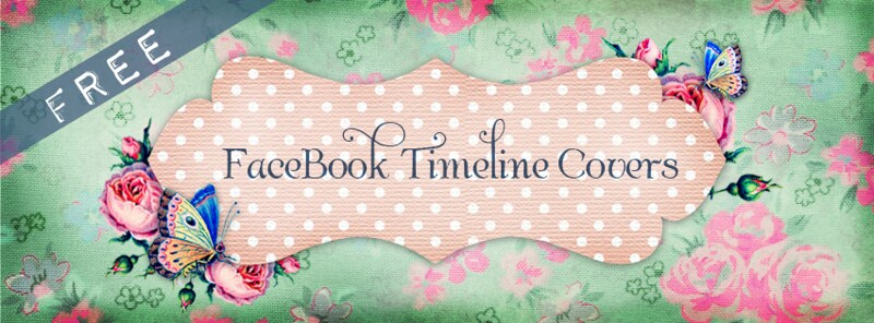 free facebook timeline cover shabby butterfly banner web ex by FPTFY
