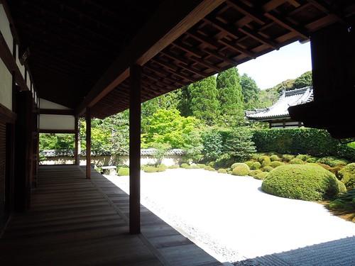 Photo 5 - 2012-07-30