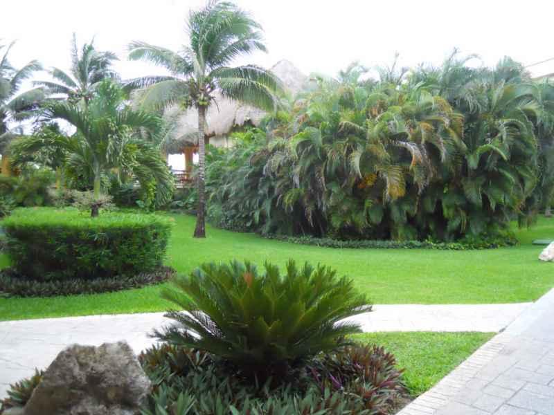Jardines Bahía Príncipe 10