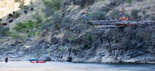 unitedstates idaho rafting cottonwood andrewshute