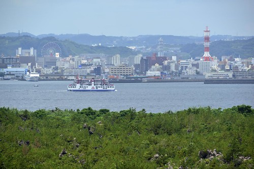 2012夏日大作戰 - 桜島 - 桜島周遊バスで桜島周遊 (5)
