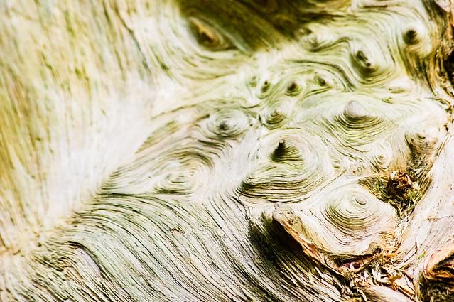 Stirred Wood