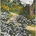 Small photo of Gardenia time in Florida Cypress Gardens