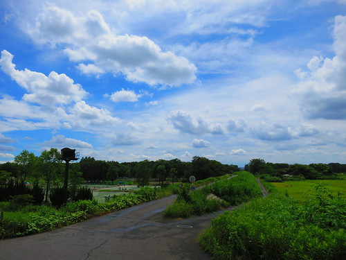 Akigase landscape