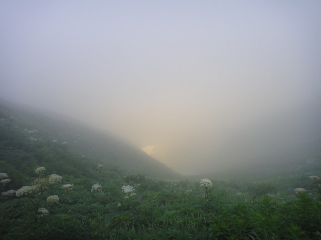 朝もやの谷を見下ろす