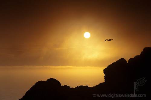Last Light - South Stack - Anglesey #63 Simple