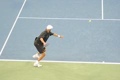 soft tennis, individual sports, tennis, sports, rackets, tennis player, ball game, racquet sport,