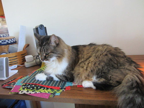 Quilting with Cat by marie watterlond