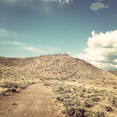 Desert Horse Monument Mound