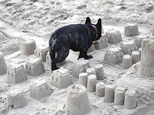 Saffy walking through a sand castle