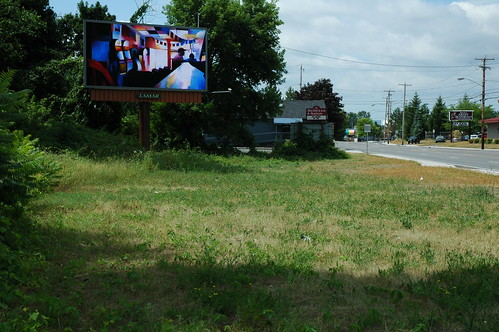 Albany Billboard Art Project 2012 - Julia Cocuzza (7)