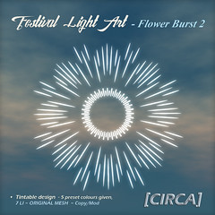 @ SaNaRae ~ Festival Light Art - Flower Burst2