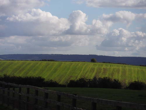 Fieldscape and Chiltern View from Aston Abbotts