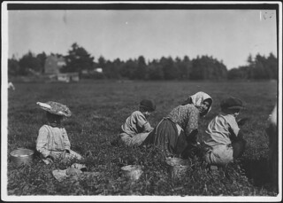 Abbe, 10 years old who picks 10 pails a day. Also two young Italian illiterates. Rochester, Mass, September 1911