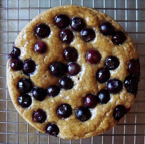 Maple Blueberry Tea Cake with Maple Glaze