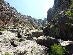 Trace cairnée de Tana di l'Orsu : dans le lit du ruisseau de Bocca a Rossa