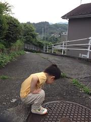 朝散歩 (2012/7/15)