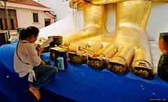 Thai woman praying at the foot of a giant Buddha statue, Wat Intrawihan, Bangkok, Thailand